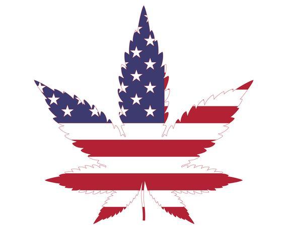 american-flag-weed